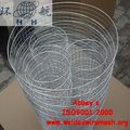 Stainless Steel 304 Gopher Control Wire Mesh Basket