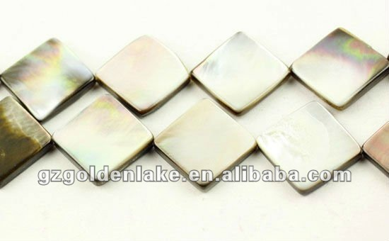 Gemstone Shell Beads