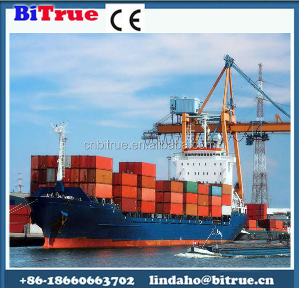 Professional sea freight shipping container dubai to india