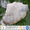 Farm Raised Seafood Fresh Tilapia Frozen Skin-on Fillet
