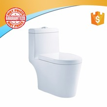 2017 January Most Trendy european style two piece toilet