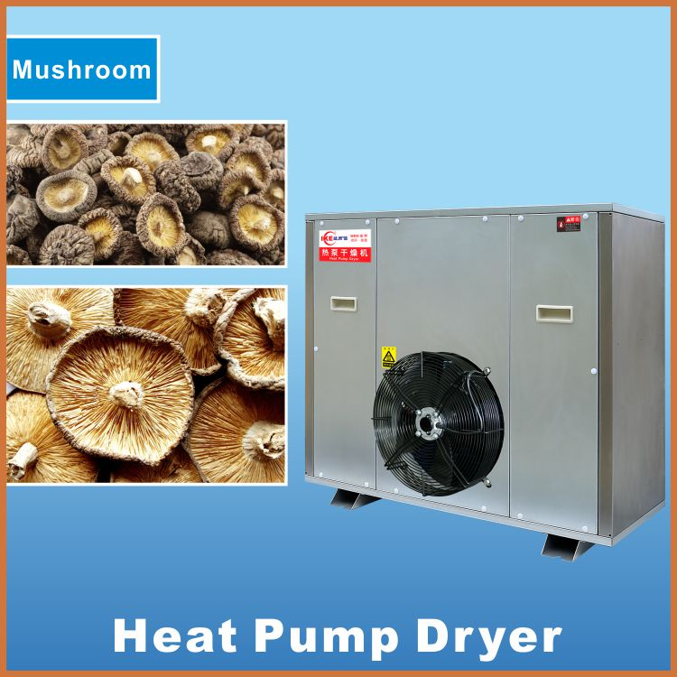 centrifugal fan vegetable dryer/stainless steel vegetable fruit drying equipment/ electric dehydrator