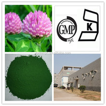 GMP Factory Pure Red Clover Extract Powder 40% Total Isoflavones