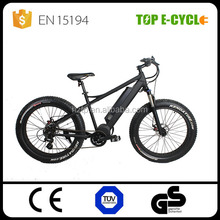 2016 CE/EN15194 good quality bicycle the new style bike the most fashionable fat tire mountain ebike