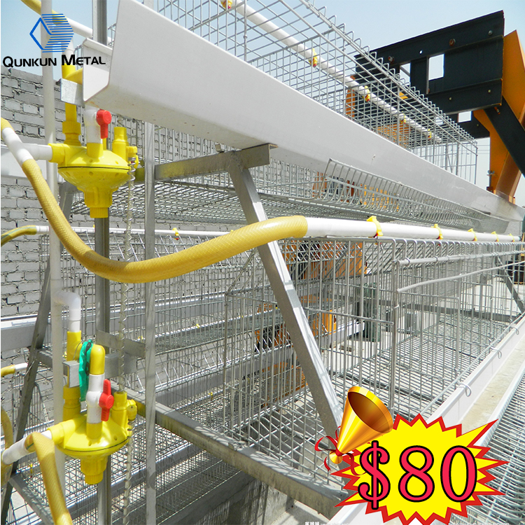 Good trade Assurance 80 dollars U type frame poultry battery cage system ghana for Tanzania Uganda poultry farm