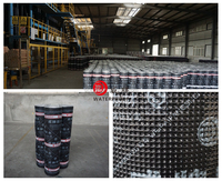 Root Penetration Resistant SBS/APP Bitumen Based Waterproofing Material