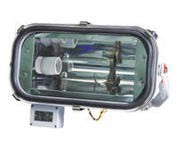 Marine 250w Flood Light with ballast