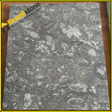 Fossil Gray Limestone, Dark Grey Fossil Brown Marble, Fossile Grey Marble Tile&Slab