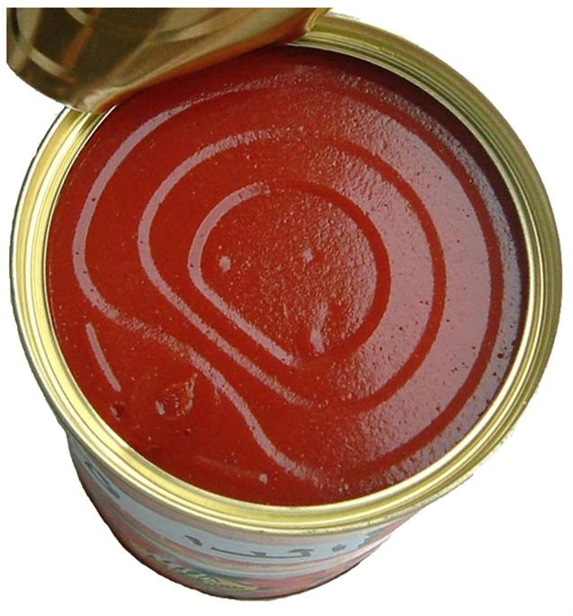Canned Tomato Paste katchup sauce healthy