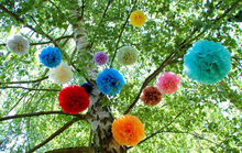 Wholesale Tissue Paper Pom poms Hanging Flower Ball For Back To School Decorations