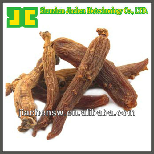 Chinese Red Ginseng/Korean Ginseng Extract Powder 5% In Reliable Quality