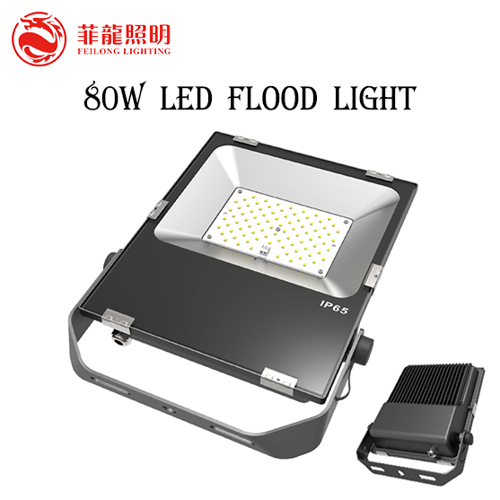 80W 5 year Warranty 50000 hours life color changing outdoor led flood light