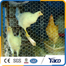 1/2 Inch Coated Wire Mesh /Pvc Chicken Mesh /High Quality Hexagonal Wire Netting