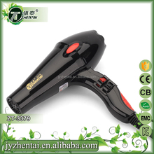 Salon Use Professional Silent Hair Dryer Super Power With AC Motor