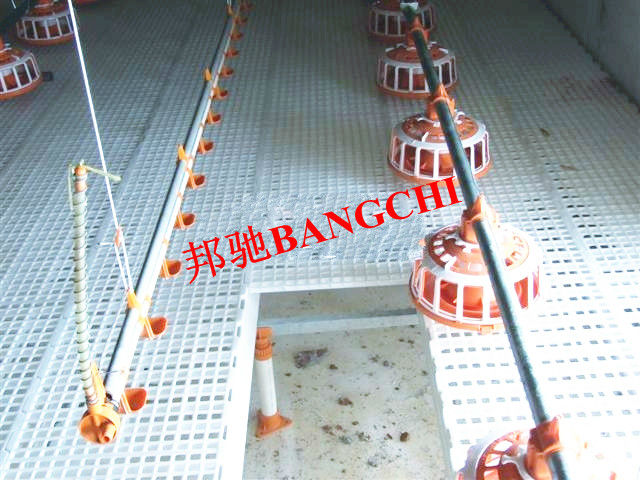Bangchi Series Poultry Chicken Slats For Broiler House