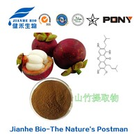 Mangosteen Powder Health Food Food Amp