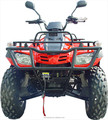 300cc snowmobile ATV/utility vehicles with Snow plough (TKA300E-B)