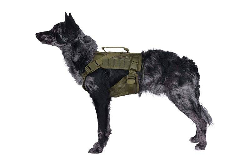 Tactical Pet Dog Vest Gear Dog Chest Rig Tactical Dog Harness