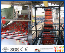 Tomato concentrate tomato paste factory machine