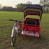 beautiful and lovely sightseeing tri-motorcycle /pulled rickshaw for sale