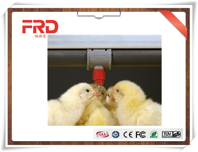 FRD Dezhou poultry farm water nipple drinker
