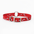 Fashion accessories for hunting dogs 25mm wide dog collar
