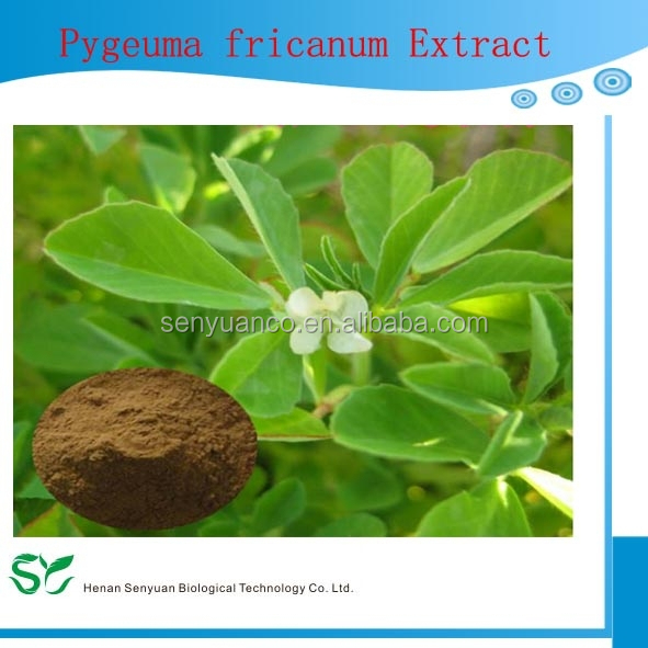 100% Natural Pure Pygeum africanum extract (Phytosteroles)