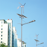 Wind Solar Hybrid Street Light Solar
