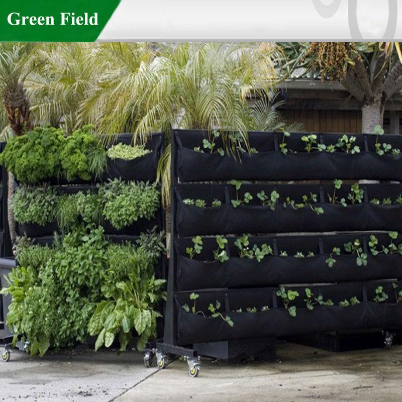 Groene veld verticale tuin levende muur tuin met drip for Verticale tuin systeem