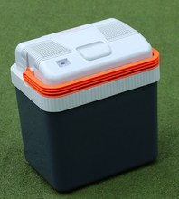 portable electric car cooler box mini fridge 12v 220V 24L