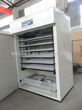 fully automatic fertile bird eggs incubator/fertile bird eggs for sale