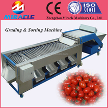 4-6 Levels Cherry Tomato Grading And Sorting Machine For Sale