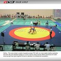 High Quality Wrestling Mat 14*14*0.06m