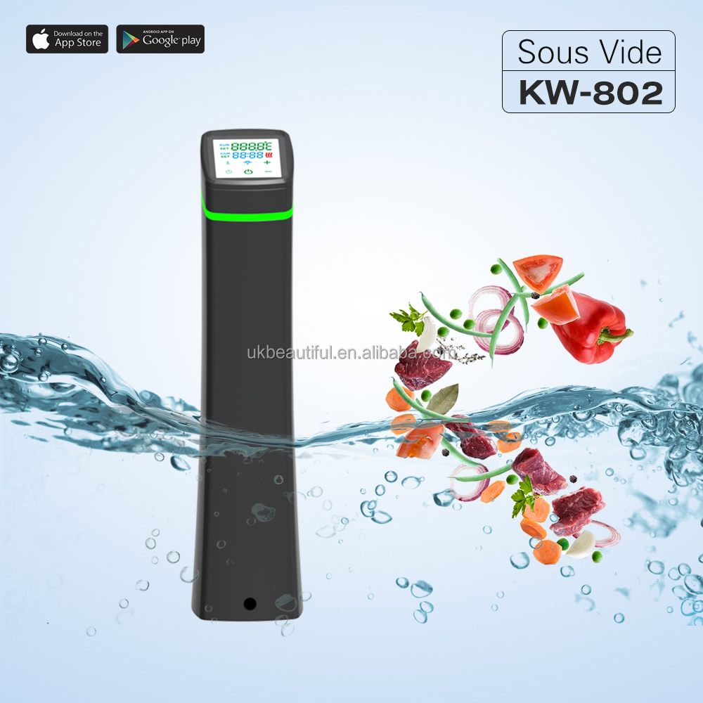sous vide immersion circulator Wifi Bluetooth Precision Cooker