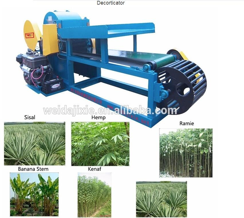 Promotional Advanced and Popular abaca fiber extractor machine