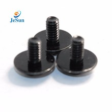 High quality black plating stainless steel customized machine screw