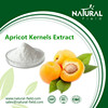 Natural active ingredients new patch amygdalin extract herb drug