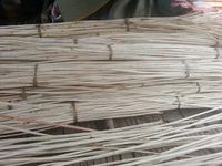 High Quality Rattan raw material
