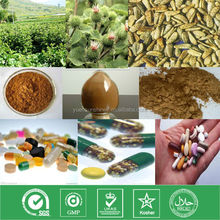 low price and top quality 100% natural plant extract powder burdock root extract