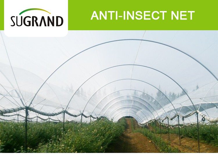 White Woven Plastic Agricultural Insect Net For Vegetable