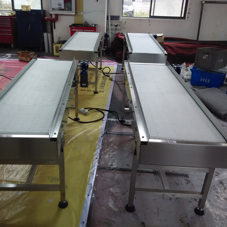 flexible belt conveyor system,flat belt conveyor