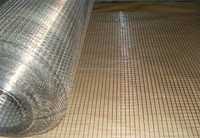 "1/2"" hot dip galvanized welded wire mesh after welding made in china"