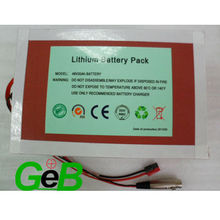 48V 20Ah Lithium e-bike battery/LiFeO4 battery/NCM battery