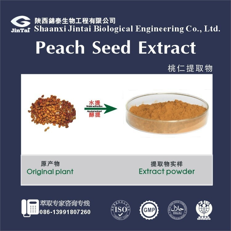 100% natural organic Top quality Peach Seed P.E.