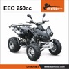/product-detail/250cc-atv-for-racing-cheaps-4-stroke-air-cooled-4-wheel-quad-with-ce-60701468149.html