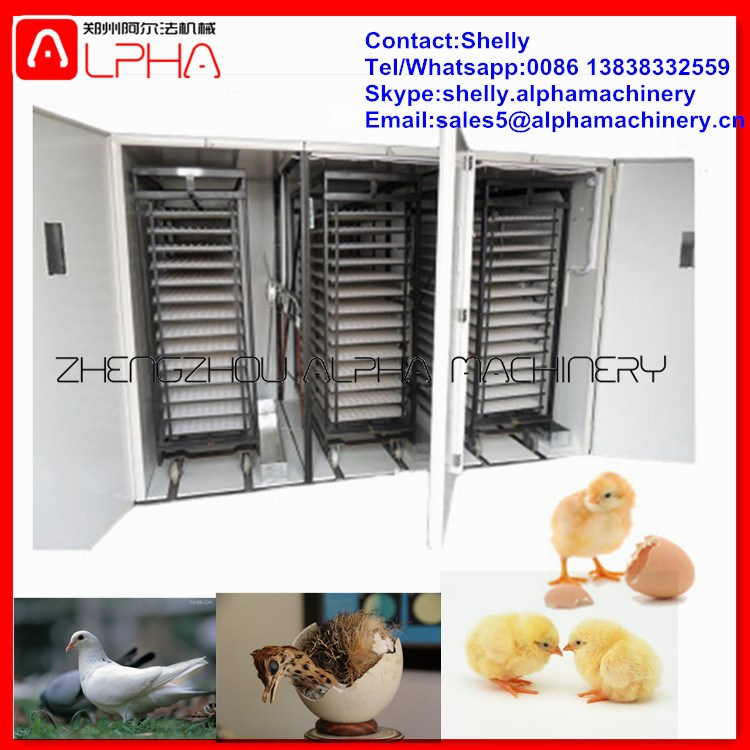 Broiler chicken incubator hatching eggs /chicks hatching machine