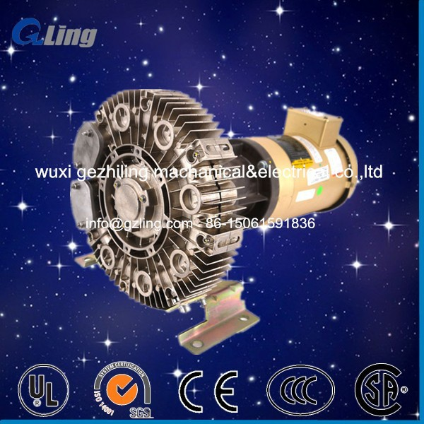 Special customized DC motor side channel vacuum pump