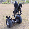1000W High-tensile Steel Frame 19'' Tire Folding Mini Electric Scooter