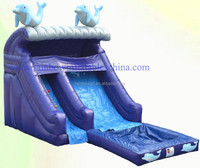 Rainbow Wholesale Dolphin Outdoor Cheap Kids Water Slides Inflatable