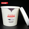500 ml disposable ice cream container/tub/cup